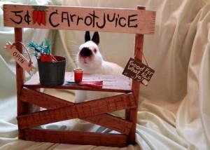 Juice-tastic