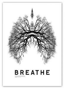 Nurture your adrenals: part 2