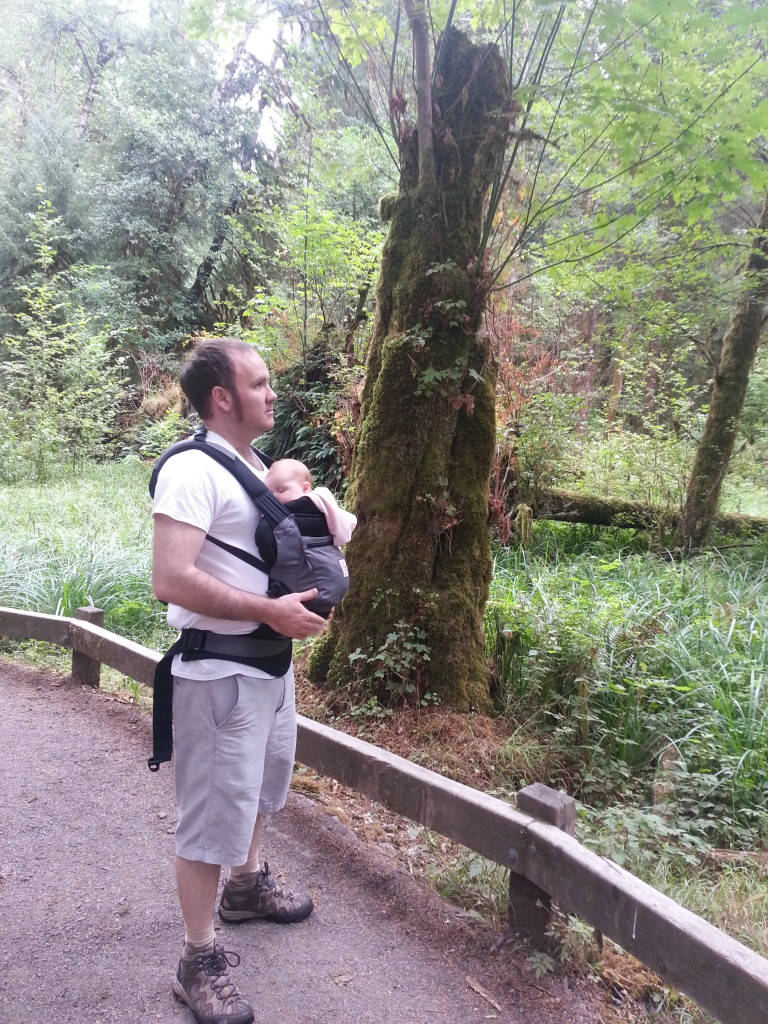 babywearing hiking