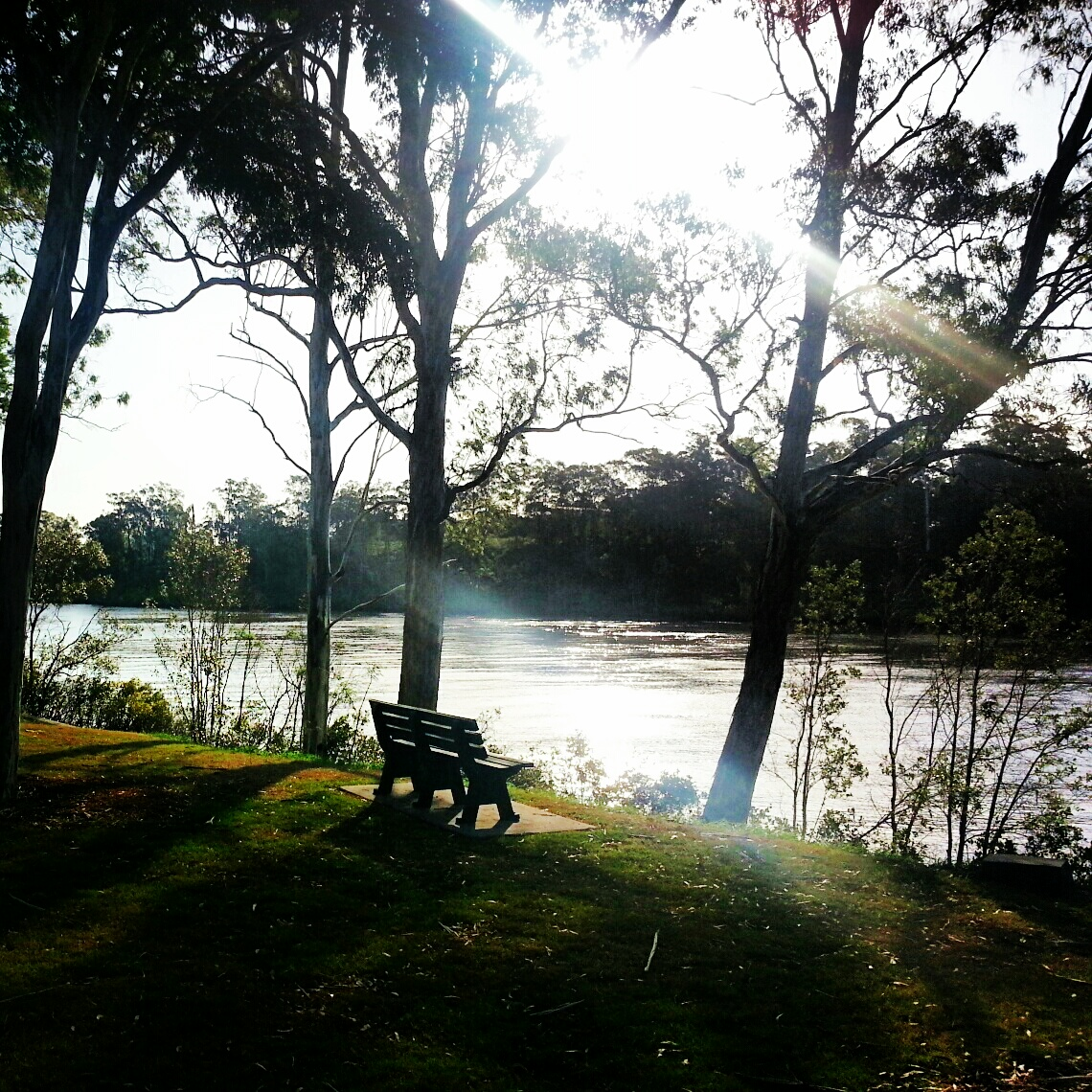 Yeronga river