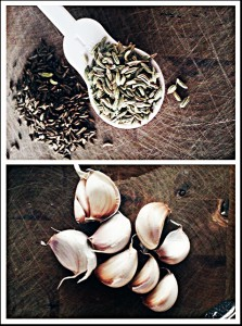 Recipe: garlic oxymel