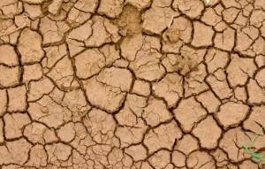 Nourishing dry wintry skin